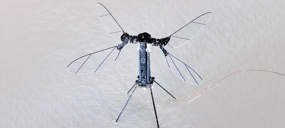 RoboBee X-Wing: el robot hecho para supervisar el medioambiente