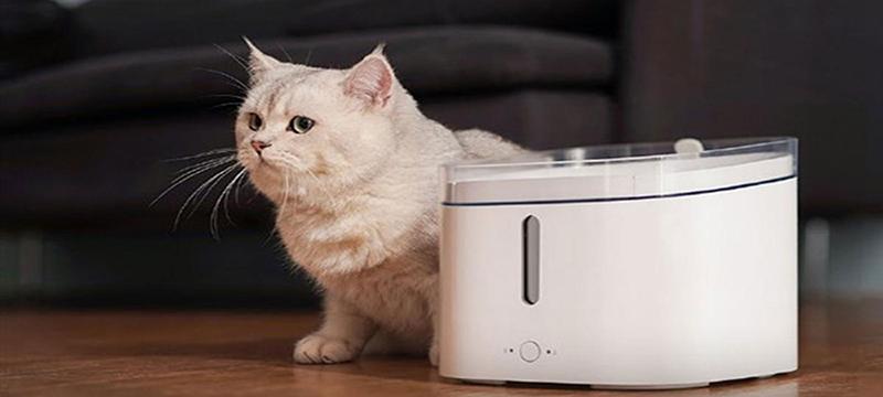 El dispensador de agua inteligente de Xiaomi tiene todo lo que tu mascota necesita