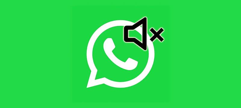 WhatsApp: Ya es posible silenciar un grupo para siempre